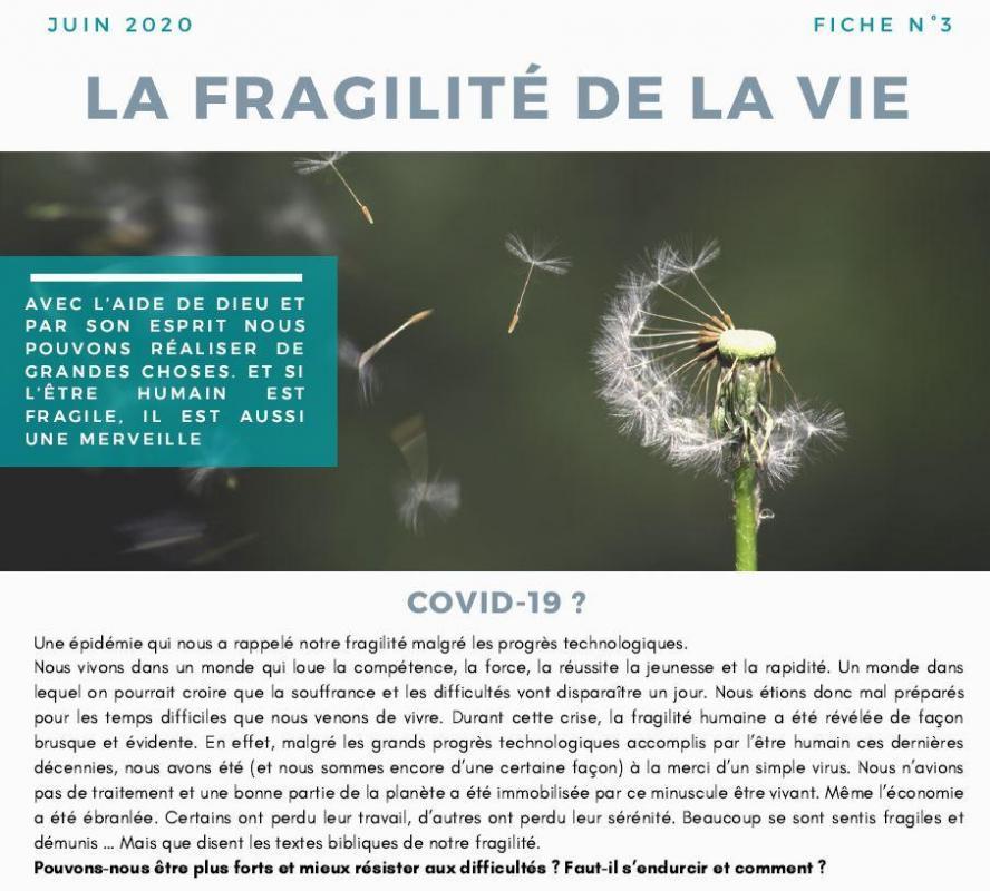 Frag vie capture